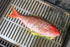 TEC Grills -Grilling Whole Fish - Fish on the Grill