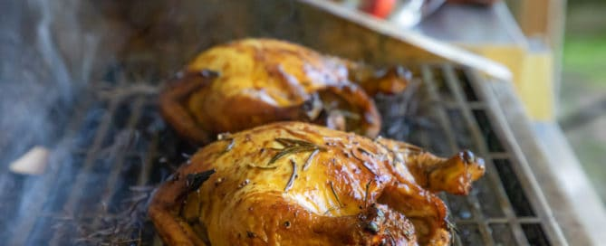 TEC Grills Pomegranate and Citrus Smoked Cornish Hens - On the Grill
